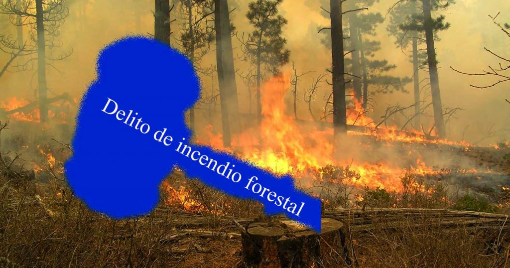 delito incendio forestal