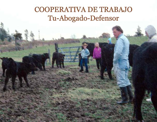 sociedad cooperativa trabajo