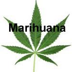 delito trafico marihuana