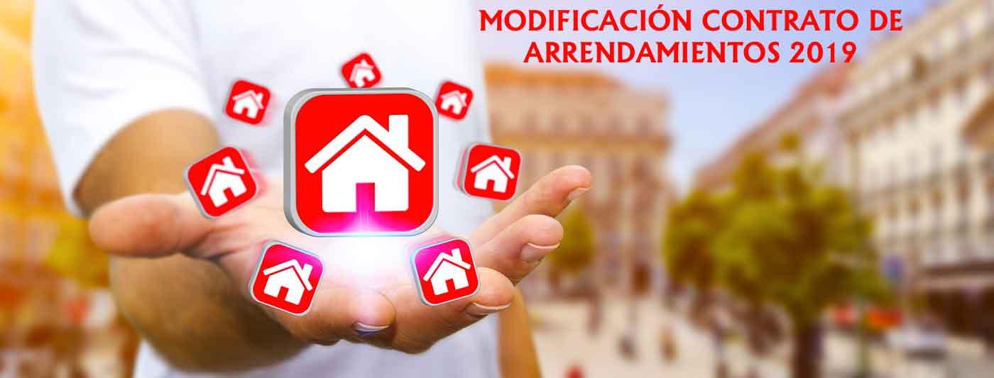 arrendamientos urbanos 2019