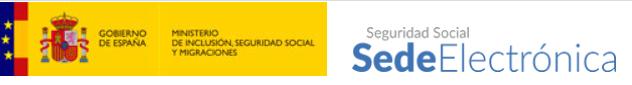 SEGURIDAD SOCIAL IMV