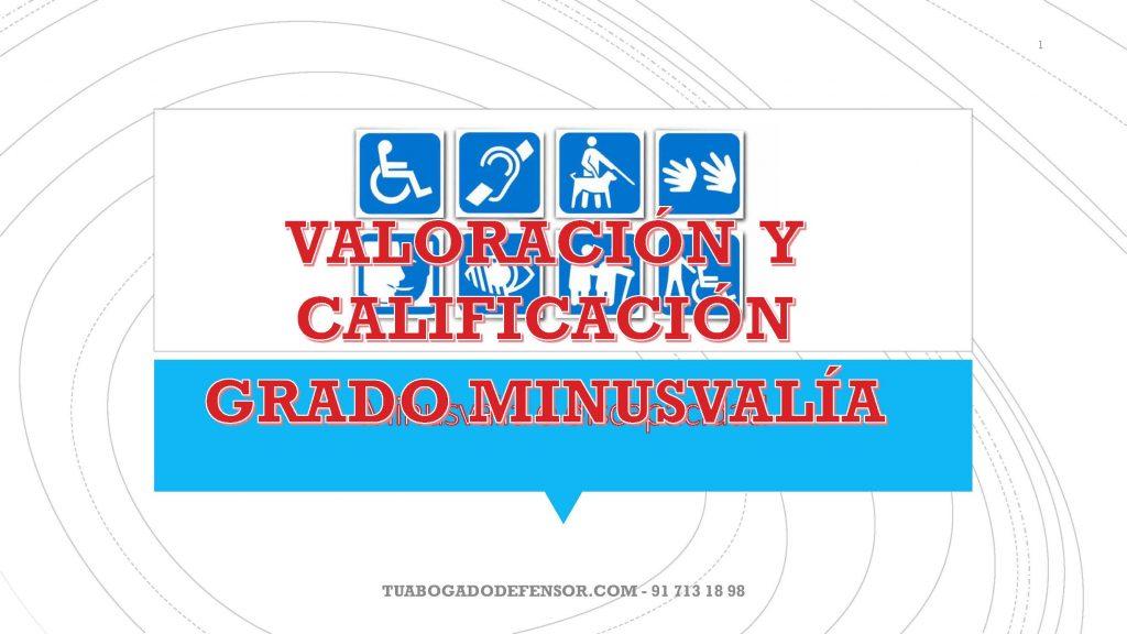 grado de discapacidad o minusvalía