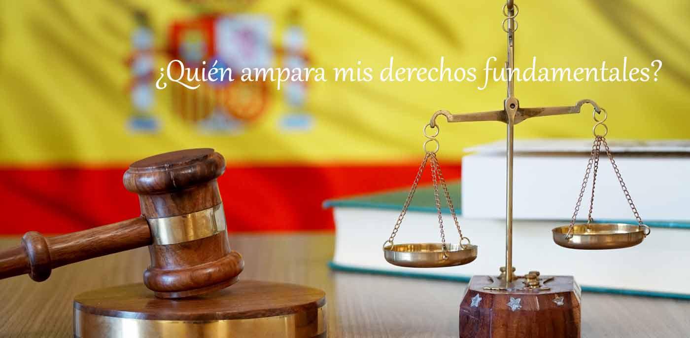 ampara el tribunal constitucional los derechos fundamentales